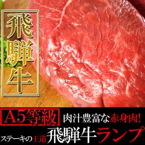 肉汁豊富な赤身肉!ステーキの王道☆飛騨牛【A5等級】ランプ100g×5枚入り[B冷蔵]