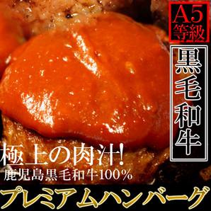 極上の肉汁!プレミアム★A5ランク鹿児島黒牛100%プレミアムハンバーグ 130g×5個[A冷凍]